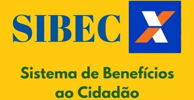 SIBEC 2020